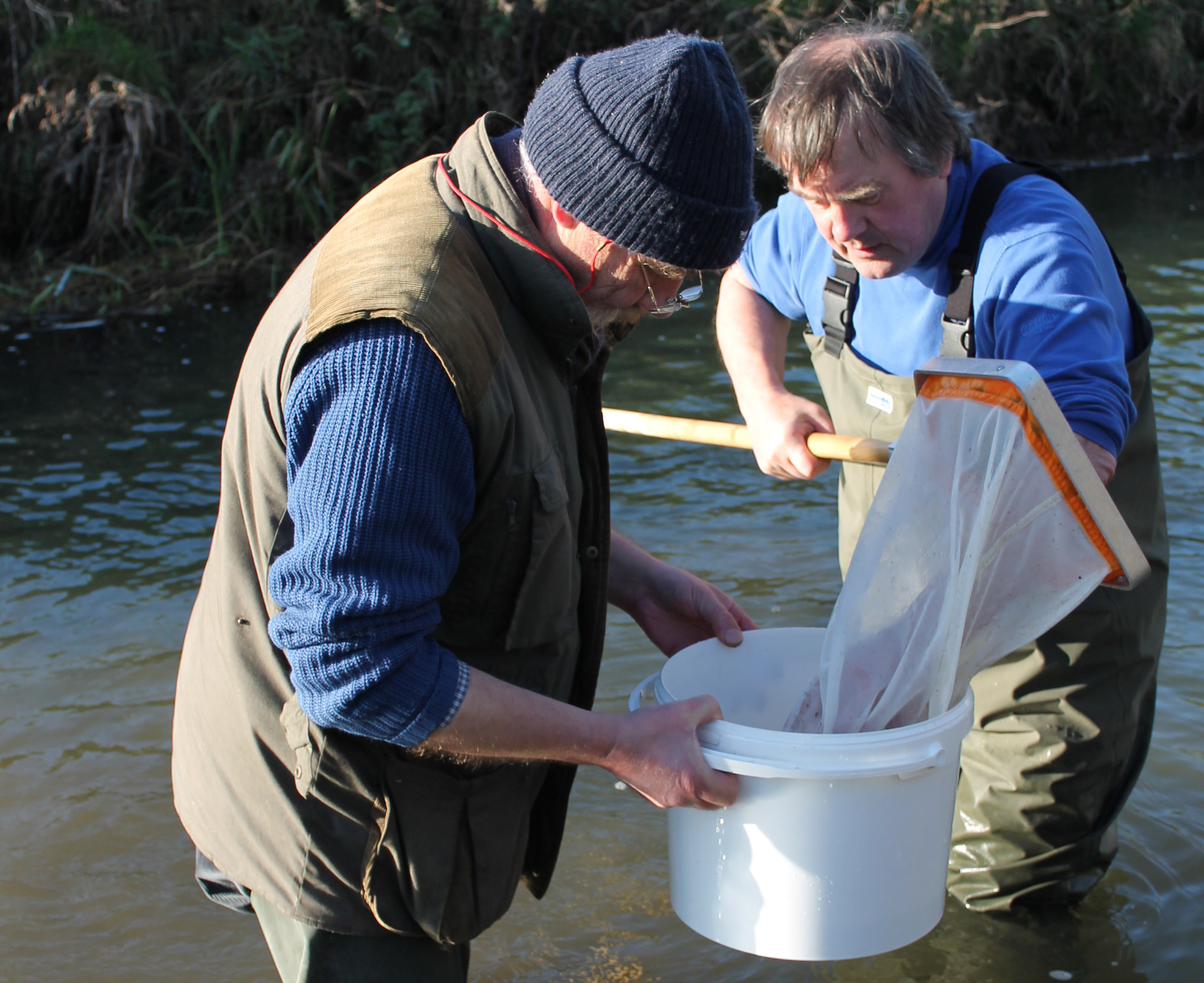 River Bain - chalk stream conservation and water quality monitoring